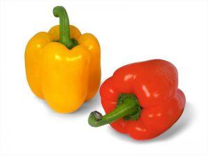 دلمه نخود و سبزیجات