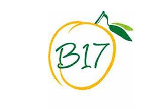 عکس دانه هایی که شفا می دهند/ ویتامین B17