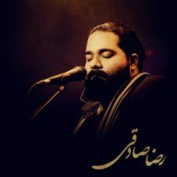 بیوگرافی رضا صادقی