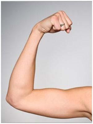 عکس ورزشهای چاقی ساق دست