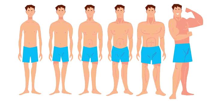 ورزش چاقی