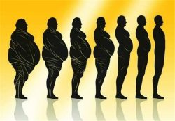 ورزش چاقی شکم درپورتال جامع فرانیاز فراتراز نیاز هرایرانی.باماهمراه باشید.