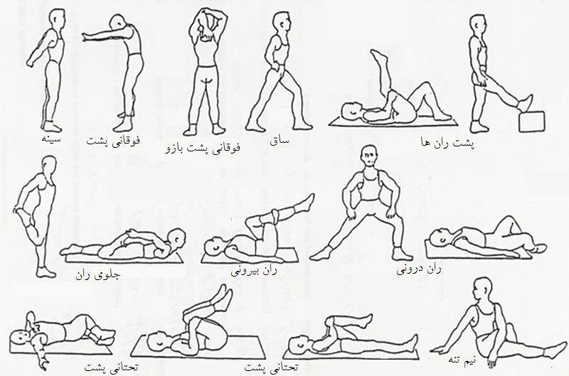 عکس حرکات ورزشی کششی