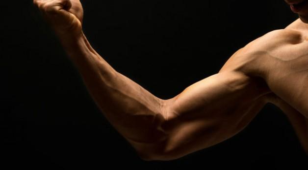 عکس خوش فرم کردن بازوها با ۴ تمرین ساده ورزشی