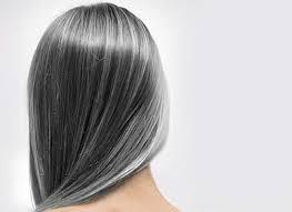 علت سفید شدن مو در جوانی در پورتال جامع فرانیاز فراتراز نیاز هر ایرانی .