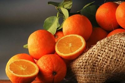 عکس خواص درمانی نارنگی در فصل پاییز