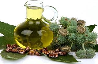 پرپشت کردن مژه و ابرو با چند روش گیاهی در پورتال جامع فرانیاز فراتراز نیاز هر ایرانی.