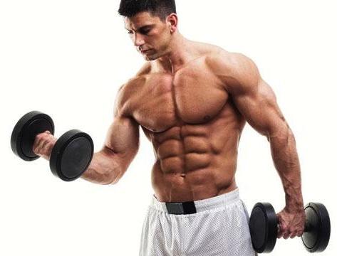 به این دلایل عضلاتتان رشد نمی کند! در پورتال جامع فرانیاز فراتراز نیاز هر ایرانی