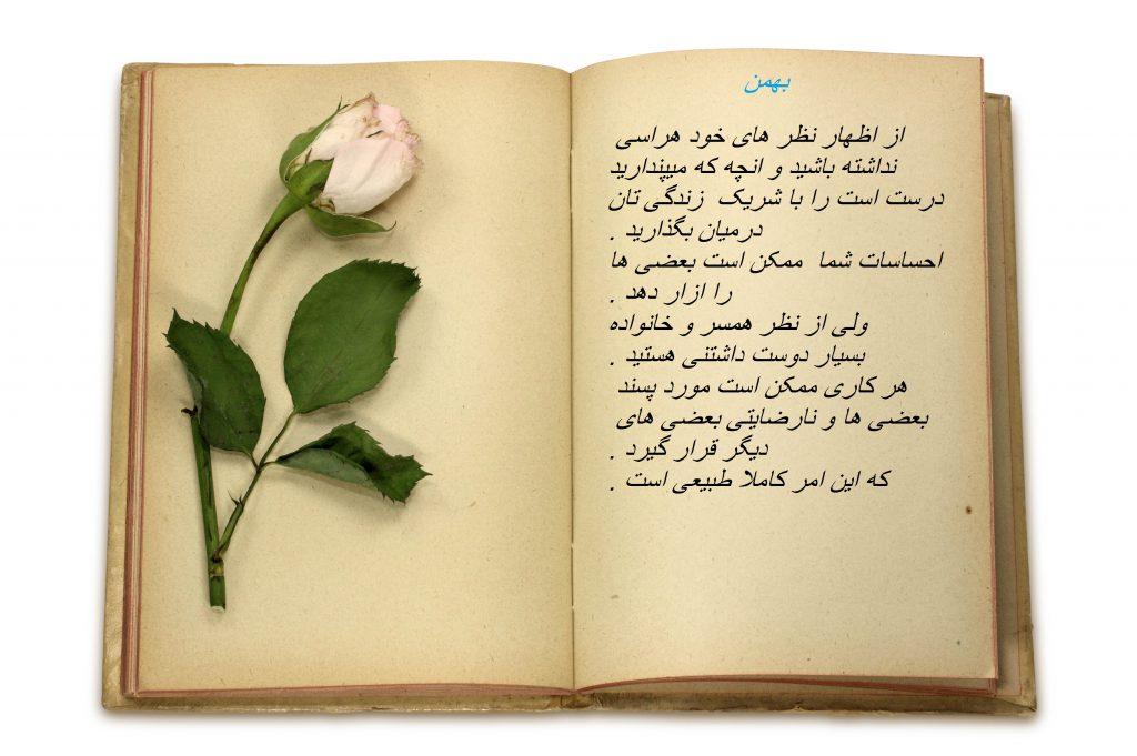 پیام های خوشبختی در پورتال جامع فرانیاز فراتراز نیاز هر ایرانی .